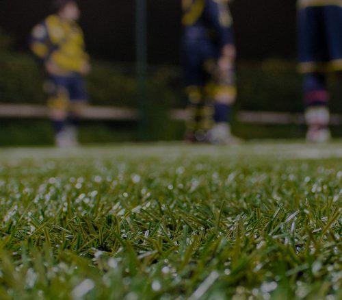 grass_players_bg