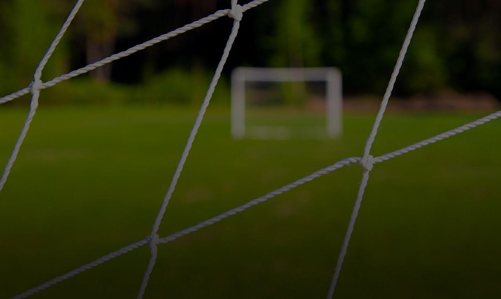 goal_through_net