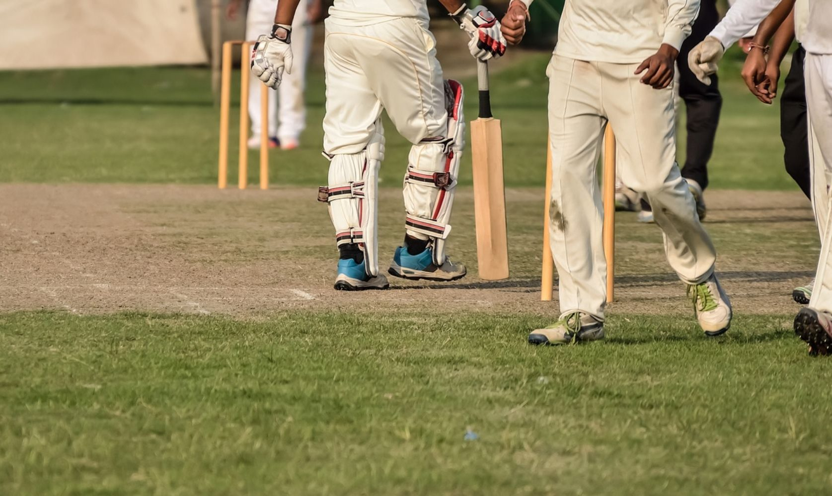 cricket players on the field